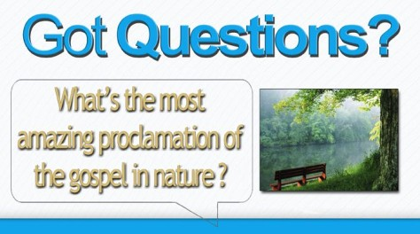 nature-proclaims-the-gospel-c
