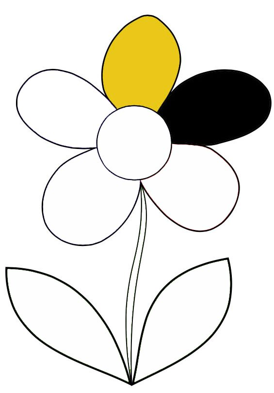 flower-black