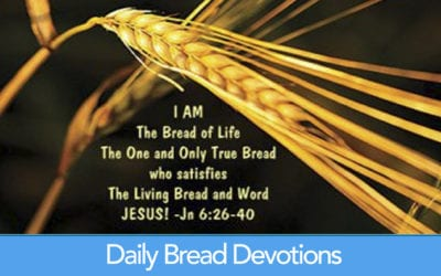 Pause to Read Today's Daily Bread