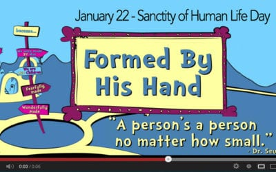 Formed by His Hand – Made for His Plan (Pro-life video)