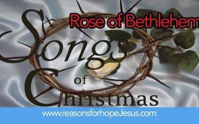 Songs of Christmas: Rose of Bethlehem