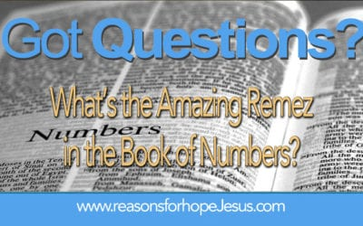 What's the Amazing Remez in the Book of Numbers?