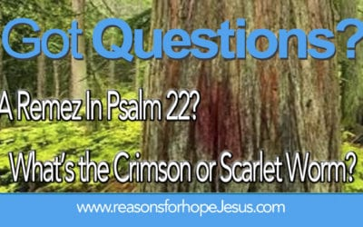 What's the Crimson (or Scarlet) Worm? A Remez In Psalm 22?