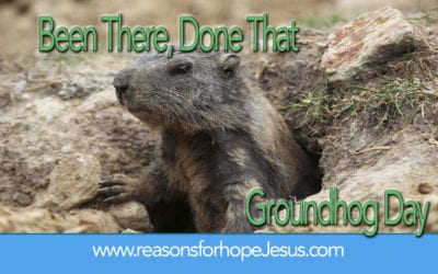 Been There, Done That — A Lesson from the Groundhog