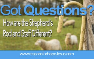 How are the Shepherd's Rod and Staff Different?