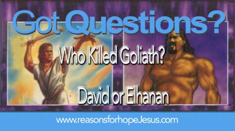 Who Killed Goliath? David or Elhanan