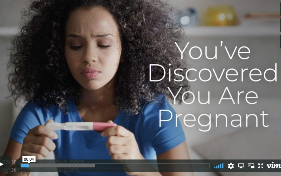 You've Discovered You Are Pregnant…Now What?