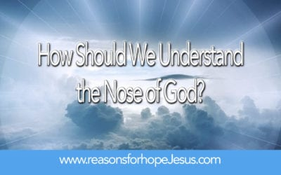 How Should We Understand the Nose of God?
