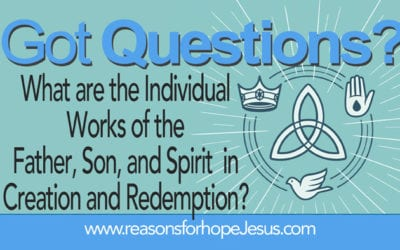 What are the Individual Works of the Father, Son, and Spirit in Creation and Redemption?