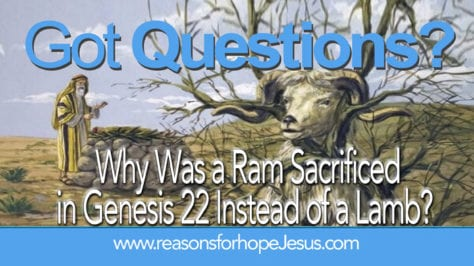 Ram Sacrificed in Genesis 22 Instead of a Lamb