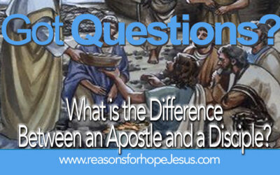 What is the Difference Between an Apostle and a Disciple?