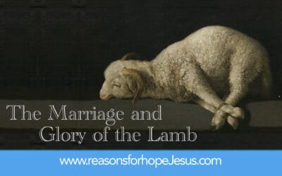 The Marriage and Glory of the Lamb