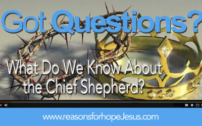 What Do We Know About The Chief Shepherd? (Psalm 24)