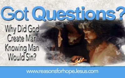 Why Did God Create Man Knowing Man Would Sin?